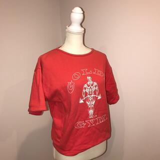 ゴールドウィン(GOLDWIN)のゴールドジムのティーシャツ(トレーニング用品)