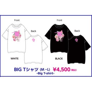 ウェストトゥワイス(Waste(twice))のTWICELAND ZONE 2 : Fantasy Park  BIGTシャツ(K-POP/アジア)