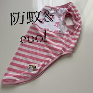 中型犬服(4Lサイズ)肉球白×ピンクボーダー(防蚊&cool)(犬)