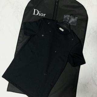 ディオールオム(DIOR HOMME)のDior Homme 17aw Bee 刺繍Tシャツ(Tシャツ/カットソー(半袖/袖なし))