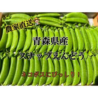 【採れたて】スナップえんどう 青森県産(野菜)