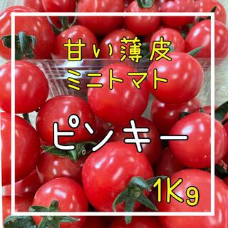 薄皮ミニトマトピンキー&きら〜ずセット‼️(野菜)