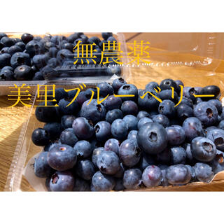 美里ブルーベリー 2キロ(野菜)