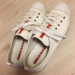 best website 0f216 9298d PRADA スニーカー ホワイト 靴 プラダ miumiu