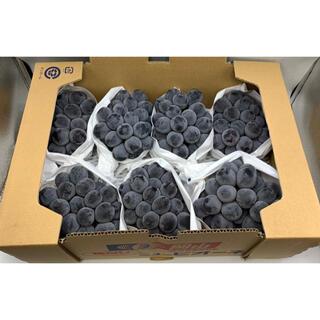 岡山県産 ニューピオーネ7-8房 1箱約5kg(フルーツ)