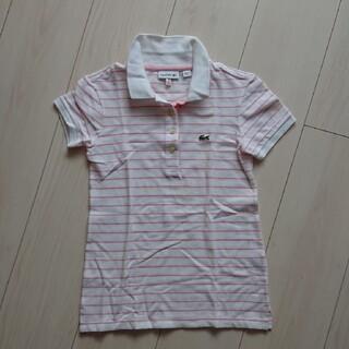 ラコステ(LACOSTE)のLACOSTE 128cm(Tシャツ/カットソー)