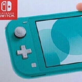 switch light ブルー(携帯用ゲーム機本体)