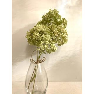 アジサイ 紫陽花 アナベル ドライフラワー スワッグ ブーケ 花束(ドライフラワー)
