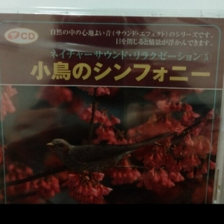 小鳥のシンフォニー CD(ヒーリング/ニューエイジ)