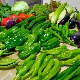 野菜 詰め合わせセット バジル、エゴマの葉もあります(野菜)