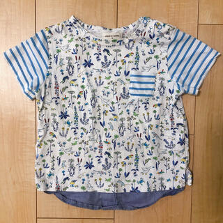 センスオブワンダー(sense of wonder)のセンスオブワンダー シャツ 90(Tシャツ/カットソー)