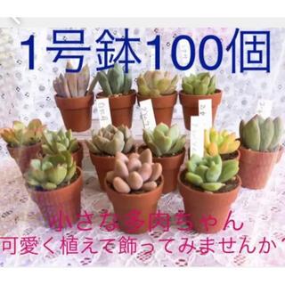 SALE‼️3700→3000ミニプラ植木鉢1寸100個セットハンドメイドにも(その他)