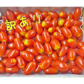 ラストです 訳あり フルーツトマト ミニトマト 1キロ コンパクト便(野菜)