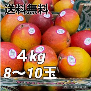 コストコ - 【送料無料】マンゴー 4kg メキシコ産