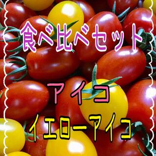 【比べて食べれる‼️ミニトマトアイコ・イエローアイコ】(野菜)
