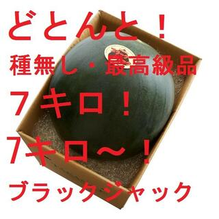 どとんと! 7キロ~ 最高級・最高品質の種無しスイカ「ブラックジャック」(フルーツ)