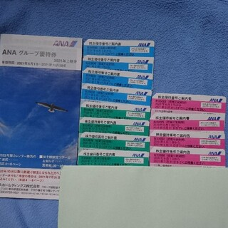 ANA 株主優待券 12枚 と 冊子1冊(その他)