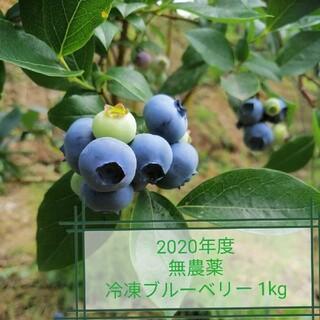 無農薬 ブルーベリー 2020年度 冷凍1kg(フルーツ)