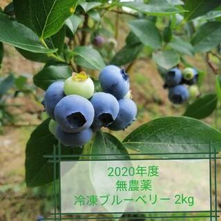無農薬 ブルーベリー 2020年度 冷凍2kg(フルーツ)