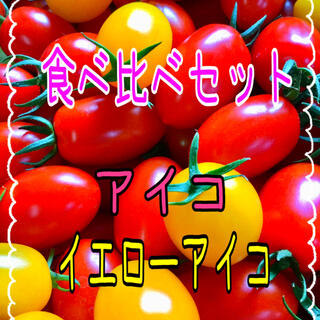 ミニトマトアイコ‼️食べ比べセット‼️(野菜)