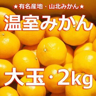 【送料無料】 #温室みかん 2キロ【超大玉】 冷やし・冷凍ミカン #山北みかん(フルーツ)