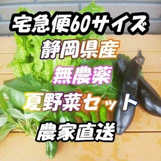 クール60サイズ*送料無料*静岡県産*無農薬*夏野菜*詰め合わせセット*農家直送(野菜)