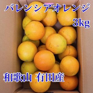 和歌山有田産 バレンシアオレンジ 3kg(フルーツ)