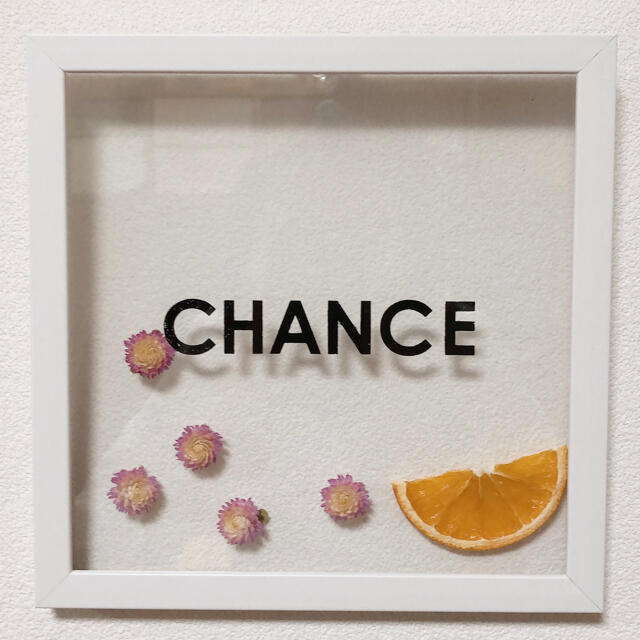 3点セット❁壁掛けインテリア ドライフルーツ ドライフラワー オレンジ かすみ草 ハンドメイドのフラワー/ガーデン(ドライフラワー)の商品写真