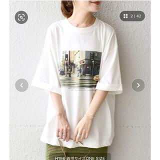シップスフォーウィメン(SHIPS for women)のシップス ships 81BRANCAビッグTEE◇(Tシャツ(半袖/袖なし))