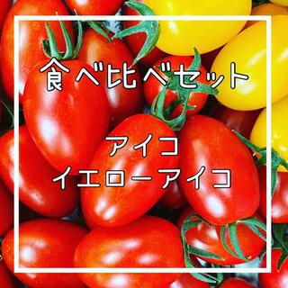 ☆数量限定☆【アイコ&イエローアイコ】1k入‼️(野菜)