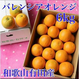 和歌山有田産 バレンシアオレンジ 6kg 送料込み(フルーツ)