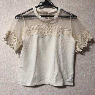 アクシーズファム(axes femme)のシースルー半袖(Tシャツ(半袖/袖なし))