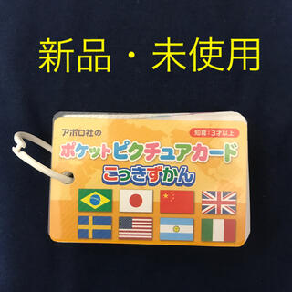 ポケットピクチュアカード こっきずかん 知育玩具(知育玩具)