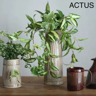 ACTUS - ACTUS フラワーベース 大