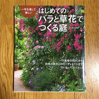 はじめてのバラと草花でつくる庭 一年を通して美しい(趣味/スポーツ/実用)