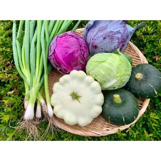 畑直送新鮮野菜(野菜)
