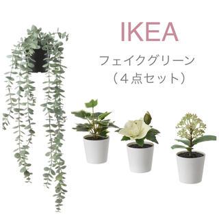 イケア(IKEA)の【新品】IKEA イケア フェイクグリーン ユーカリ(吊り下げ+鉢3個)フェイカ(その他)