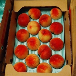 桃 果物 山梨県(フルーツ)
