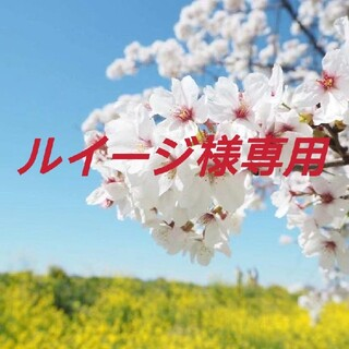 PRADA - ルイージ様専用♡PRADA 巾着ポーチ★収納バッグ ギフト品 ブルー