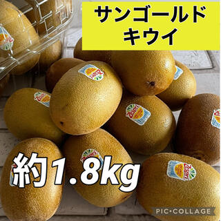【送料無料】ゼスプリ サンゴールドキウイ 約1.8kg(フルーツ)