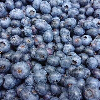 岩手県産 無農薬ブルーベリー 冷凍4キロ(フルーツ)