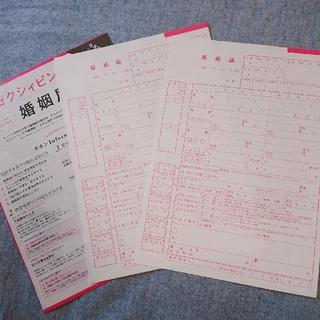 ゼクシィ*ピンクの婚姻届2枚*役所提出可(結婚/出産/子育て)