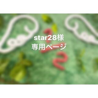 star28様 専用ページ(その他)
