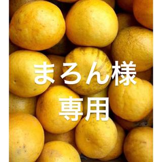 まろん様 専用 愛媛県 宇和ゴールド 河内晩柑 15kg(フルーツ)