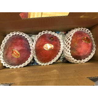 レッドキーツマンゴー  1キロ(フルーツ)