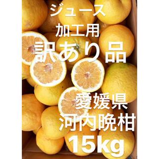 訳あり品 愛媛県 宇和ゴールド 河内晩柑 加工用 ジュース用 15kg(フルーツ)