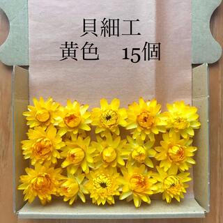 (16)貝細工 ヘリクリサム ドライフラワー 黄色15個(ドライフラワー)