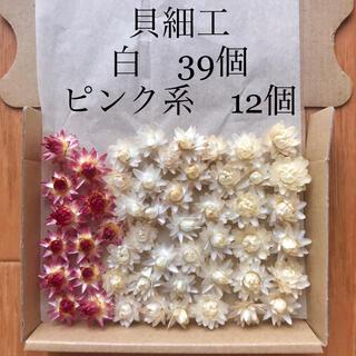 (18)貝細工 ヘリクリサム ドライフラワー 51個(ドライフラワー)