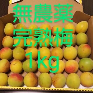 白加賀*完熟梅*1kg(フルーツ)