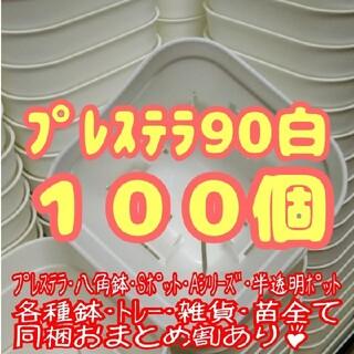 【スリット鉢】プレステラ90白100個 多肉植物 プラ鉢(プランター)